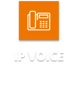 Business IP Voice